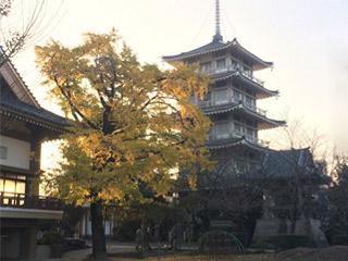 Shineiji Temple