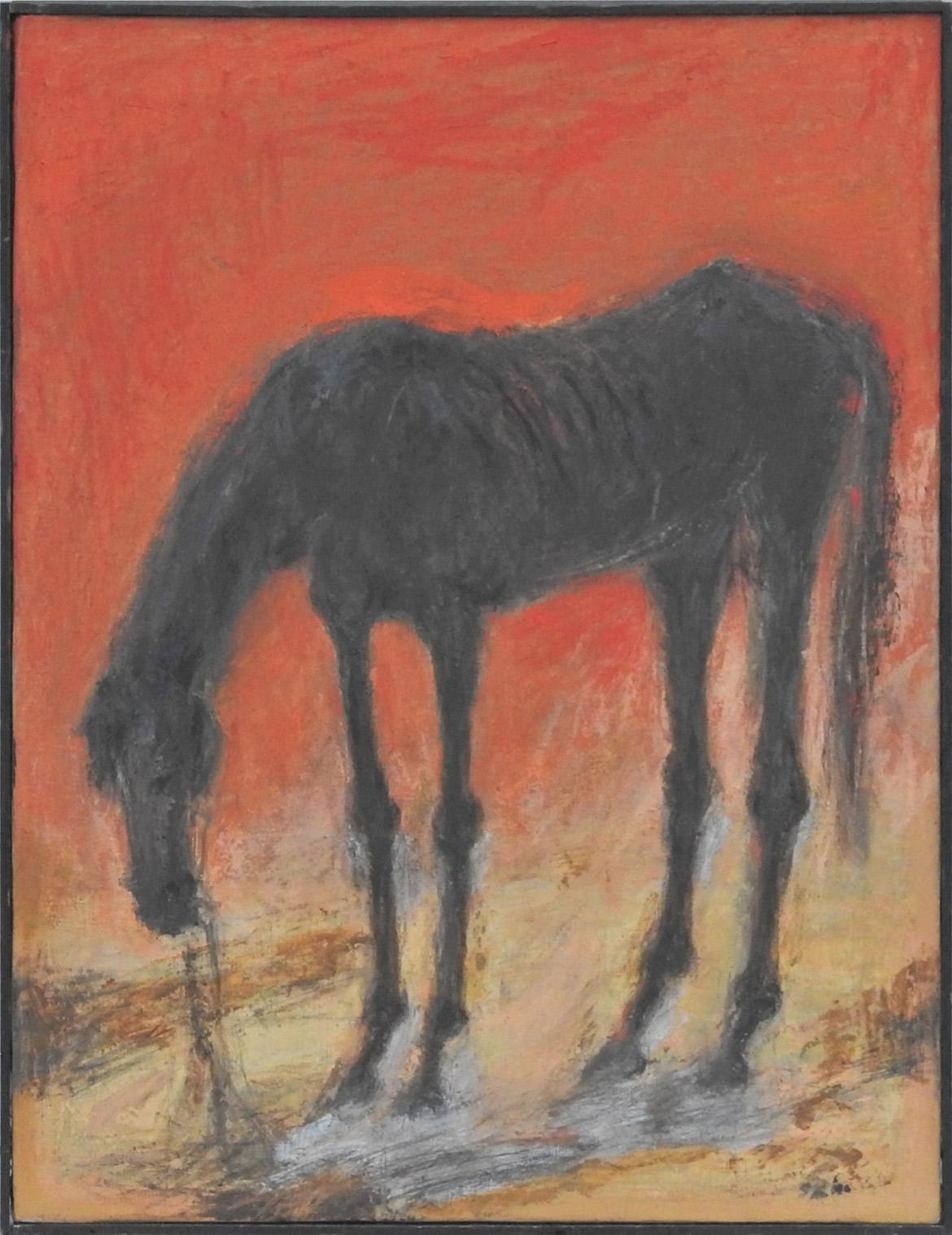 Sick horse (leg)