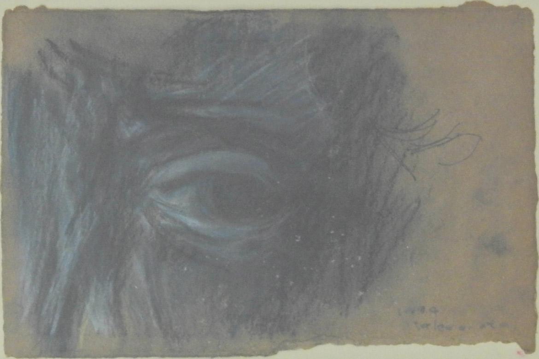 Sketch - Horse eyes