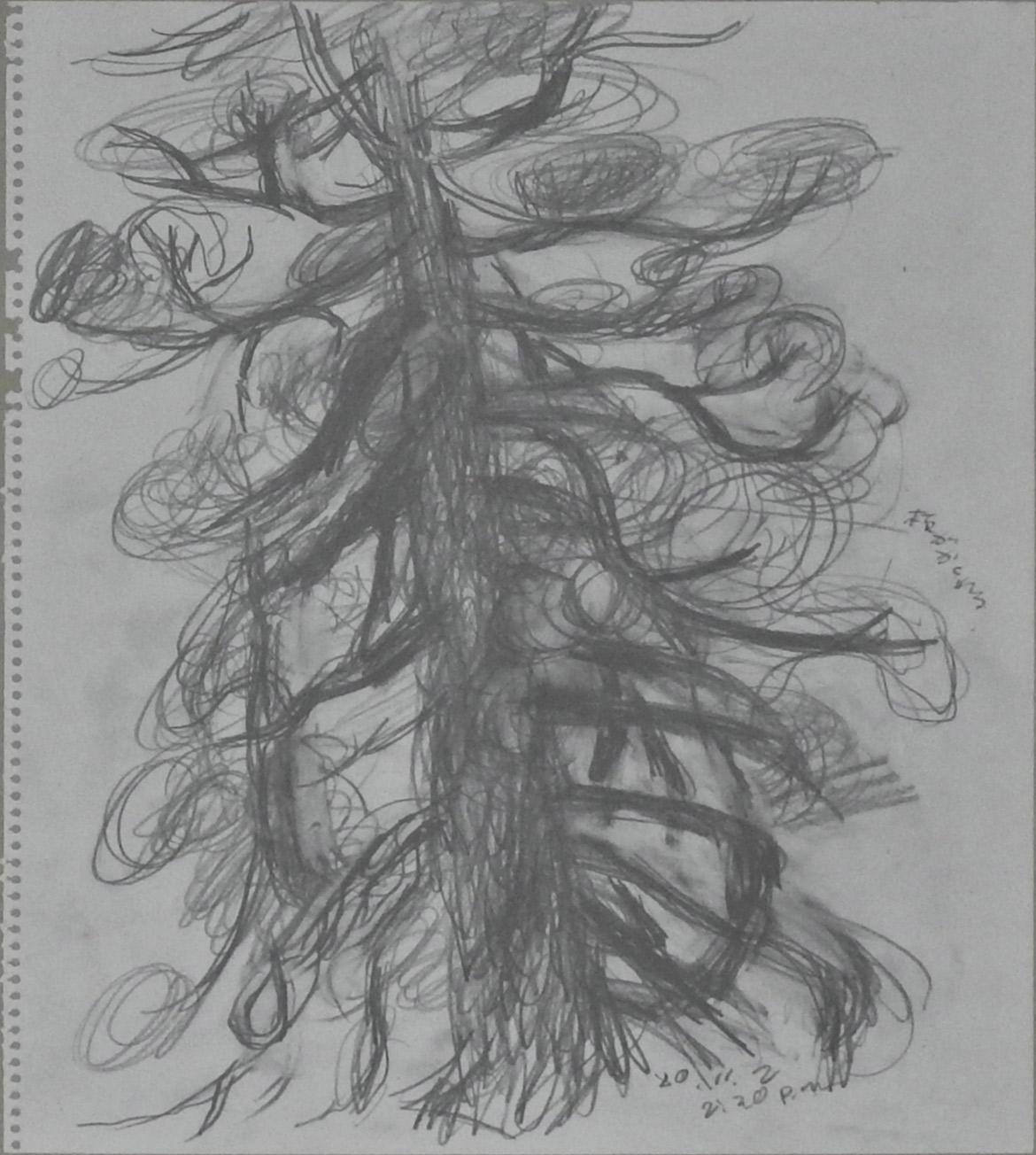 Sketch (Tree)